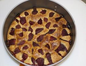 torta-morbida-fragole
